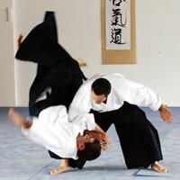 Michel Erb, aïkido